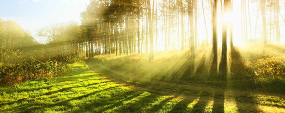 Sunlight path